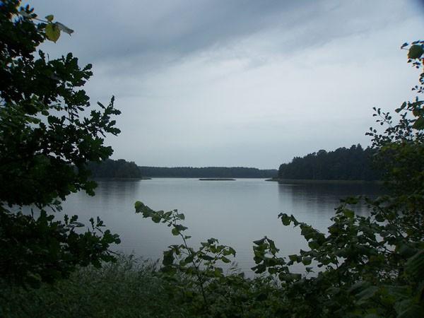 Tajemnica Jeziora Mokrego