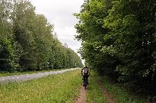 Szlak dawnym nasypem kolejowym