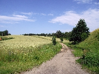 Szlak rowerowy Ernsta Wiecherta