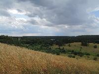 Szlak pieszy Góra Czterech Wiatrów