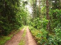 Szlak rowerowy Pętla Bełdany